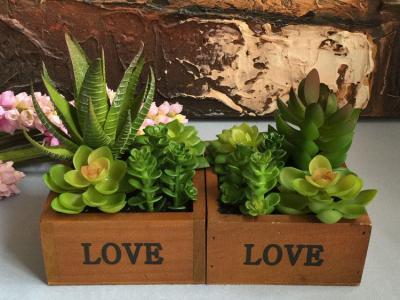 Kunstpflanzen Sukkulenten Vorschau