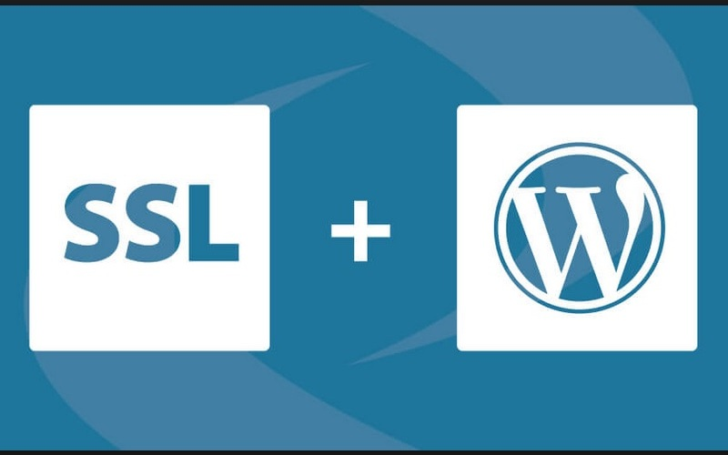 How to Install SSL on WordPress Website