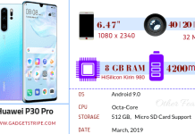 Huawei P30 Pro Specification