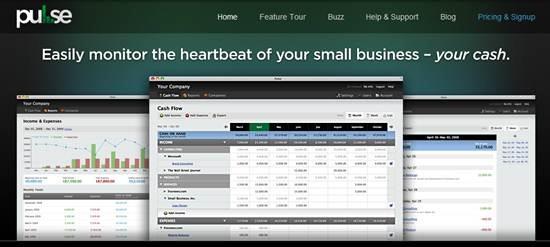 Cash Flow Management - pulse
