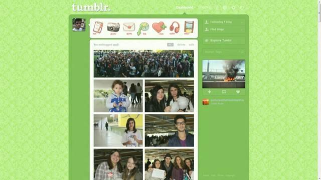 Green Lace 49 Useful Tumblr dashboard theme for Tumblr User