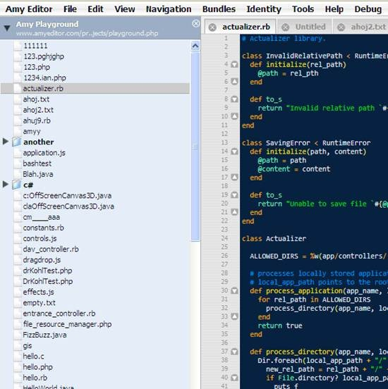 AmyEditor: Collaborative Text and Source Code Editor Tool for developer