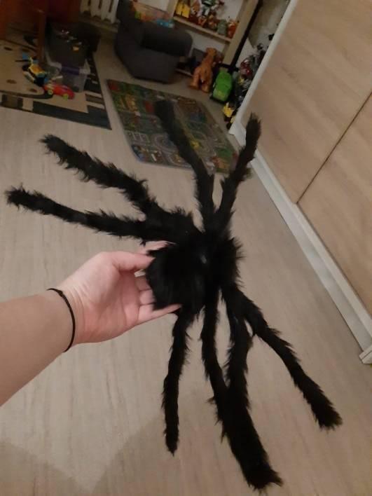 Hb3298b8f4c934bec954f023dd90f7a55a Scarry Black Spider Halloween Decoration