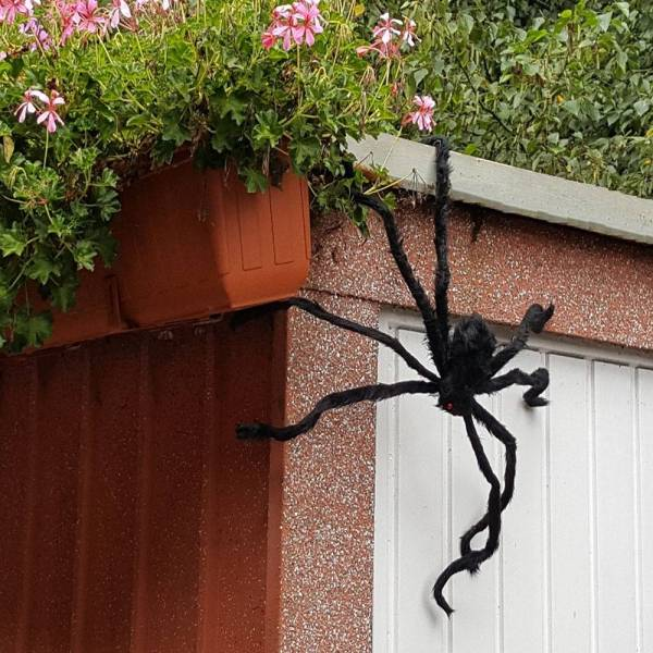 Scarry Black Spider Halloween Decoration Gadkit