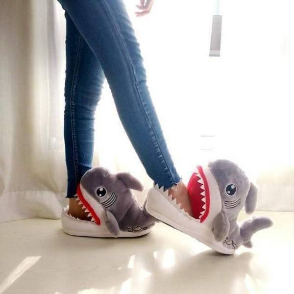 Shark Slippers Gadkit