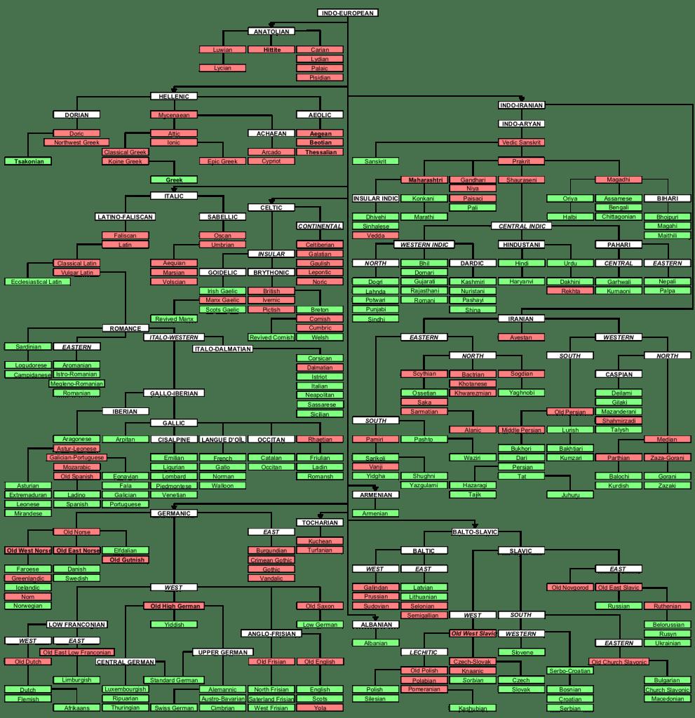 "The ""tree"" of Indo-European languages"