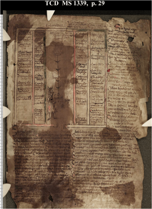 The Book of Leinster, 29 a. Tech Midchúarda. 'Diagram of the Banqueting Hall, with the names and order of the principal guests and the portions allotted to them.' 'Creccairi' is about halfway down the fourth column.