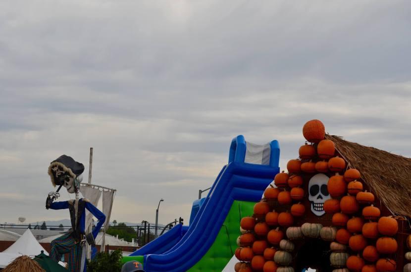 Mr. Bones Pumpkin Patch