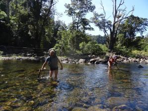 Misty rando river crossing (Copy)