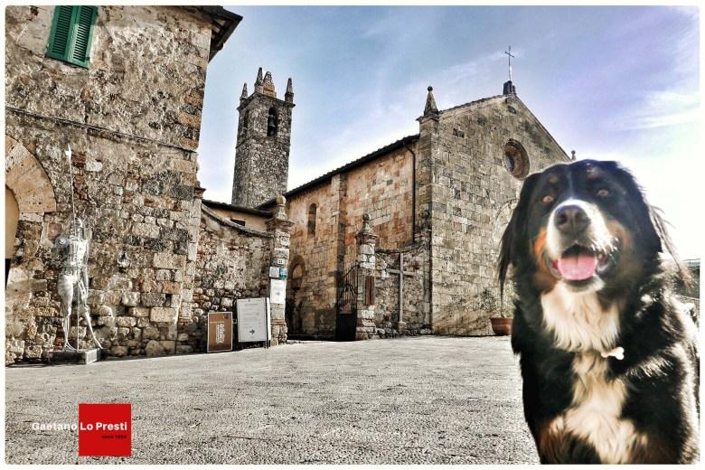 Monteriggioni 2
