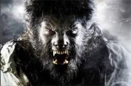 thewolfmanbenicio
