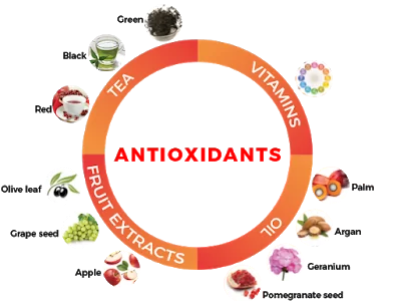 Antioxidants are naturally occurring plant substances that protect the body from damage caused by harmful molecules called free radical