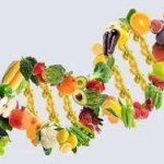Vegetarian diets: Indications and planning