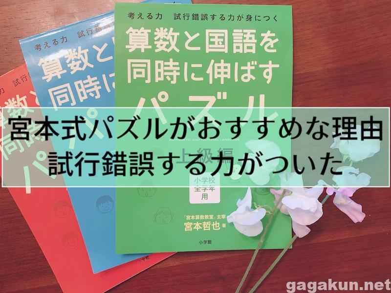 miyamotoshiki-img