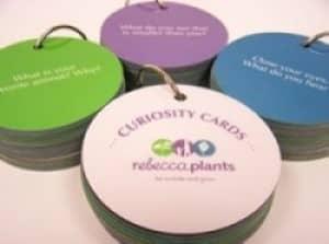curiosity cards