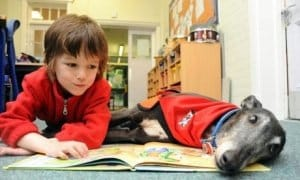 child reading to a dog