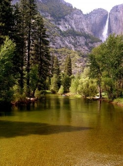 Yosemite with the Grandkids—Camping or Comfort?