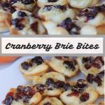Cranberry Brie Bites {12 Days of Thanksgiving}