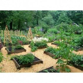 Perfect Home Garden Design Ideas That Make You Cozy 04