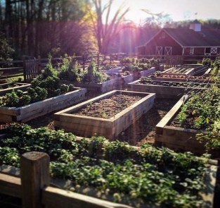 Perfect Home Garden Design Ideas That Make You Cozy 32
