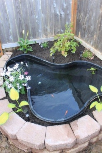 Stunning Backyard Aquarium Ideas 06