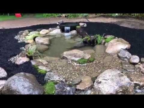 Stunning Backyard Aquarium Ideas 11