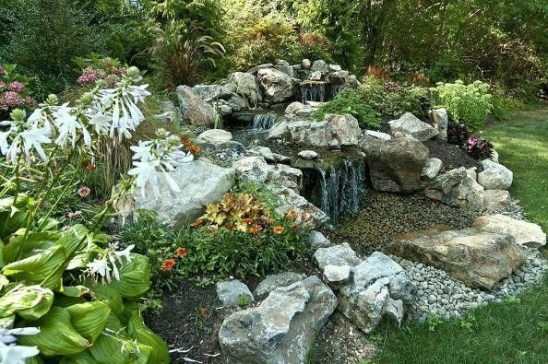 Stunning Backyard Aquarium Ideas 12