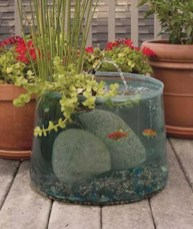 Stunning Backyard Aquarium Ideas 16