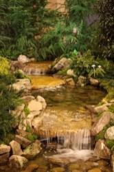 Stunning Backyard Aquarium Ideas 24