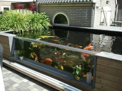 Stunning Backyard Aquarium Ideas 29