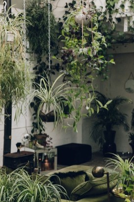 Latest Home Patio Design With Hanging Plants 47