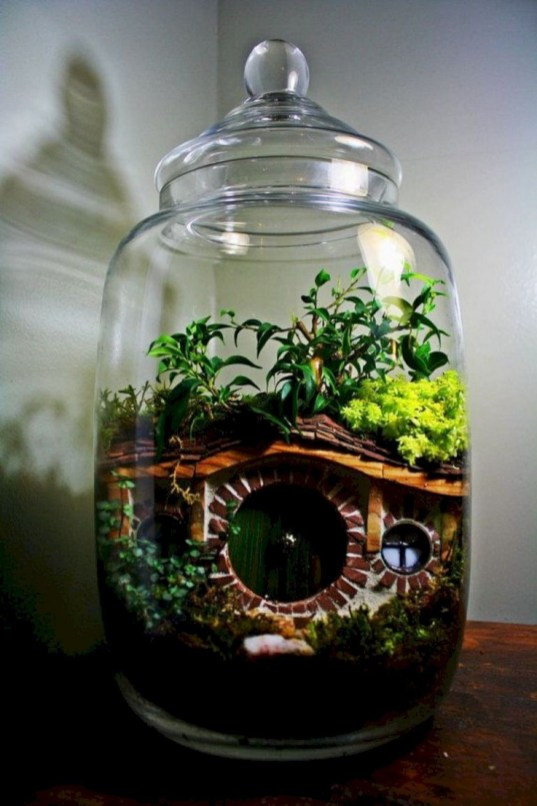 Fascinating Diy Terrariums Ideas To Try This Seasonl 10