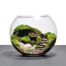 Fascinating Diy Terrariums Ideas To Try This Seasonl 15