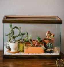 Fascinating Diy Terrariums Ideas To Try This Seasonl 16
