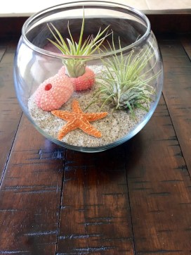 Fascinating Diy Terrariums Ideas To Try This Seasonl 21