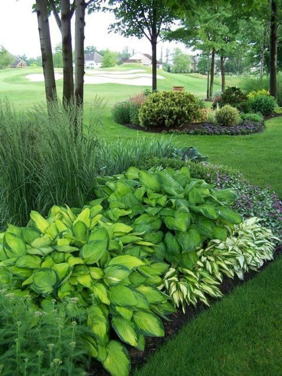 Newest Green Grass Design Ideas For Front Yard Garden 36