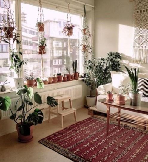 Unique Window Design Ideas With Plant That Make Your Home Cozy More 12