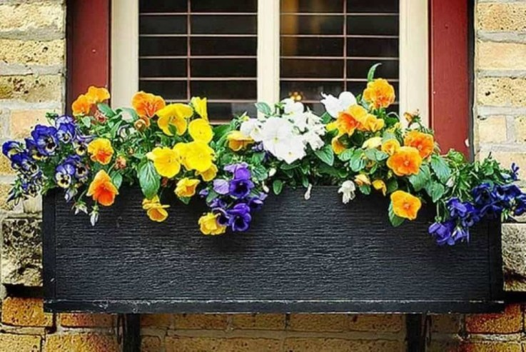 Unique Window Design Ideas With Plant That Make Your Home Cozy More 27