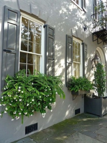Unique Window Design Ideas With Plant That Make Your Home Cozy More 30
