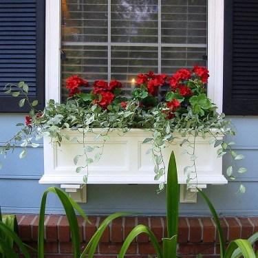 Unique Window Design Ideas With Plant That Make Your Home Cozy More 32
