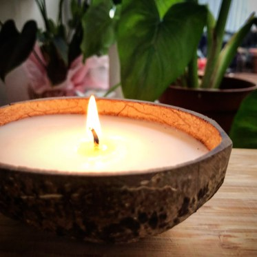 Perfect Diy Coconut Shell Ideas For Everyonen That Simple To Try 08