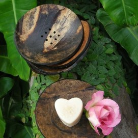 Perfect Diy Coconut Shell Ideas For Everyonen That Simple To Try 20