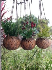 Perfect Diy Coconut Shell Ideas For Everyonen That Simple To Try 28