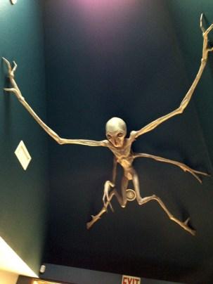 Wonderful Halloween Design Ideas Themed Tomb And Skull Inspire 22