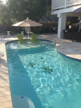 Cozy Backyard Swimming Pools Design Ideas To Copy Right Now 06