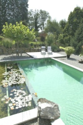 Cozy Backyard Swimming Pools Design Ideas To Copy Right Now 17