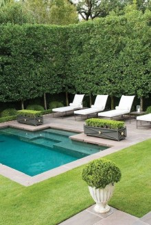 Creative Backyard Swimming Pools Design Ideas For Your Amazing Pools 46