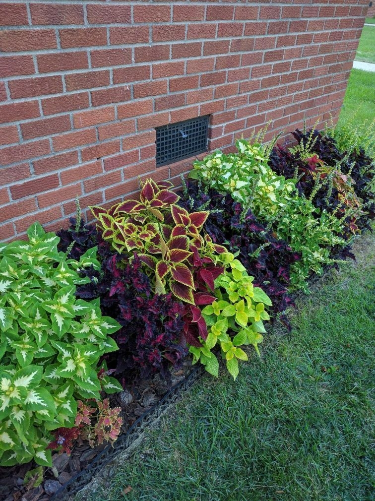Pretty Lawn Edging Design Ideas For Your Yard To Try 02