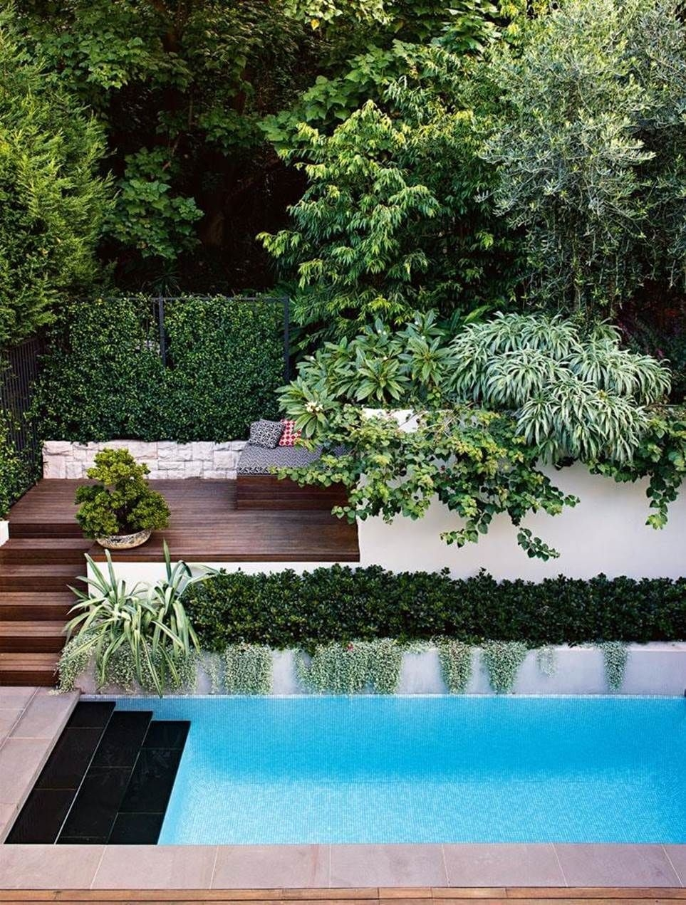 Surprising Tropical Pool Landscaping Design Ideas To Try Soon 45
