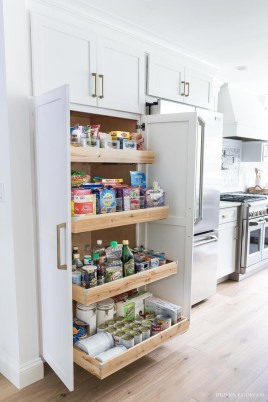 Incredible Kitchen Pantry Design Ideas To Optimize Your Small Space 17